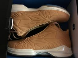 BrandBlack Force Vector Leather Premium basketball shoes DS